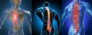 chiropractic-services