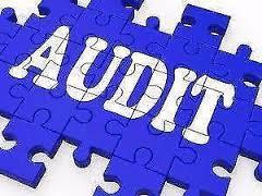 audit-1